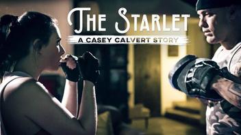 Старлетка: История Кейси Калверт